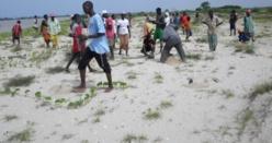Dièle-Mbam : Quand l'ostréiculture fait vivre tout un village( Reportage).