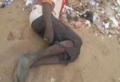 Tuerie des malades mentaux à Tamba : Horribles révélations des gendarmes