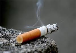134ème appel de Seydina Limamou : le combat du « mahdi » contre le tabac