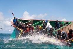 PECHE: Près de 90 % des besoins en consommation de produits halieutiques de Louga viennent de Saint-Louis