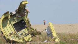 Reprise des recherches sur le site du crash du MH17