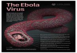 ALERTE: les signes et symptômes de la maladie à virus EBOLA (OMS)