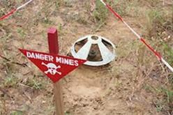 Bignona : 7 personnes tuées par une mine entre Welkalire et Djalinkine