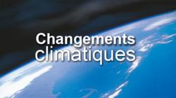 Changements climatiques : L'Afrique sollicite entre 10 et 20 milliards de dollars par an d'ici à 2050