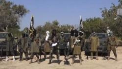 Boko Haram s'empare d'une ville proche du Niger