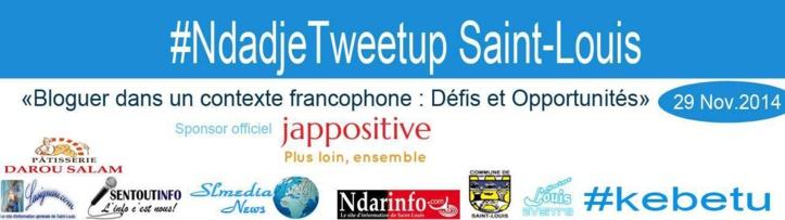 XVe SOMMET DE LA FRANCOPHONIE: les blogueurs de Saint-Louis en « NdadjeTweetup »,  samedi.