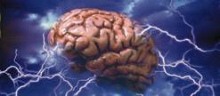 Afrique: Partenariat contre épilepsie - Les molécules disponibles font disparaitre 70 % des crises