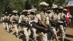 """L'Afrique centrale élabore sa stratégie pour """"éradiquer"""" Boko Haram"""