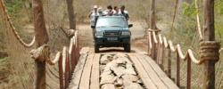 Tourisme : Le Sénégal passe  « à la cour » d'assises du tourisme ! Par Mouhamed Faouzou DEME