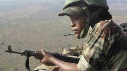 "L'armée du Nigeria a tué ""un grand nombre"" de terroristes"