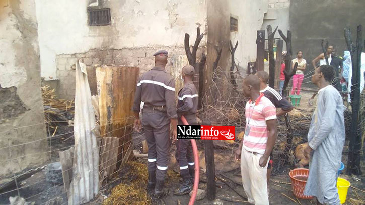 SAINT-LOUIS - GRAVE INCENDIE À BANGO: du bétail calciné (photos)