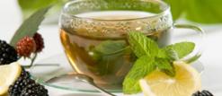 La consommation « abusive » du thé pendant le repas peut conduire à l'anémie