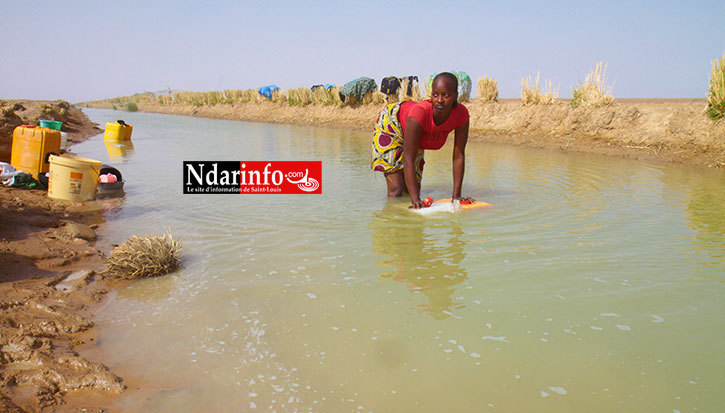 Photo Archives NdarInfo