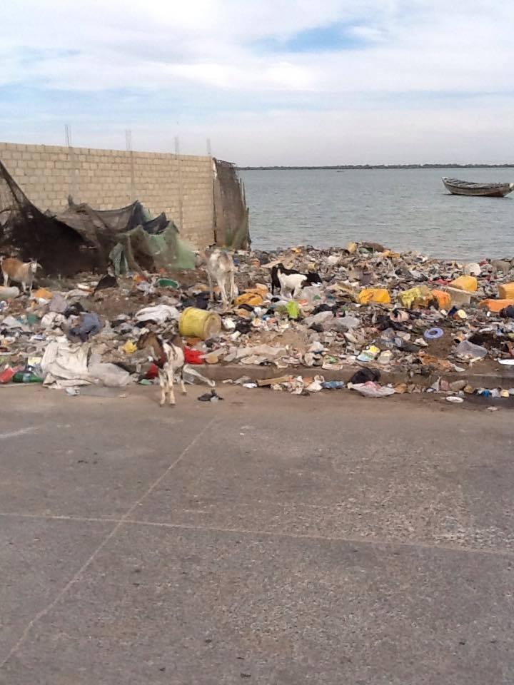 CRI DE COEUR D'UN HABITANT DE GOXUMBATHIE - Monsieur le maire de Saint-Louis : Notre quartier est vraiment sale ! Par Zahir FALL