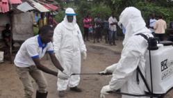 Un rapport accable l'OMS pour sa gestion d'Ebola