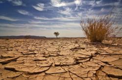 Changement climatique : La 8ème édition du Forum PRCM est lancée à Praia !