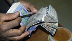 ECONOMIE: Baisse de plus de 4% du secteur primaire au Sénégal.