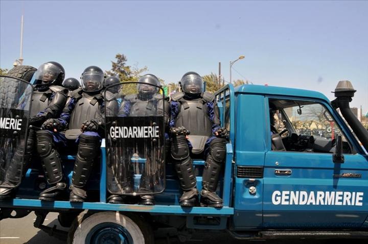 SÉCURISATION DE SAINT-LOUIS : 21 véhicules immobilisés, 14 personnes arrêtées.