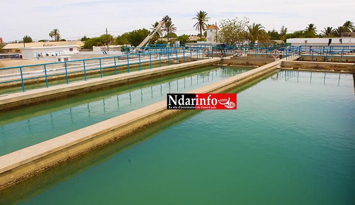 Circuits de traitement d'eau à l'Usine de Khor. La denrée provient de la station de la station de BANGO.