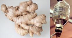 Une étude montre que le gingembre est 10.000 fois plus fort et plus efficace que la chimiothérapie (ne tue que les cellules cancéreuses)