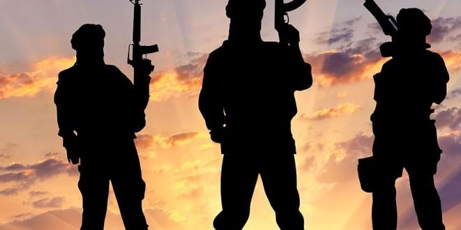 Un numéro vert contre le terrorisme  ( 800 00 20 20)