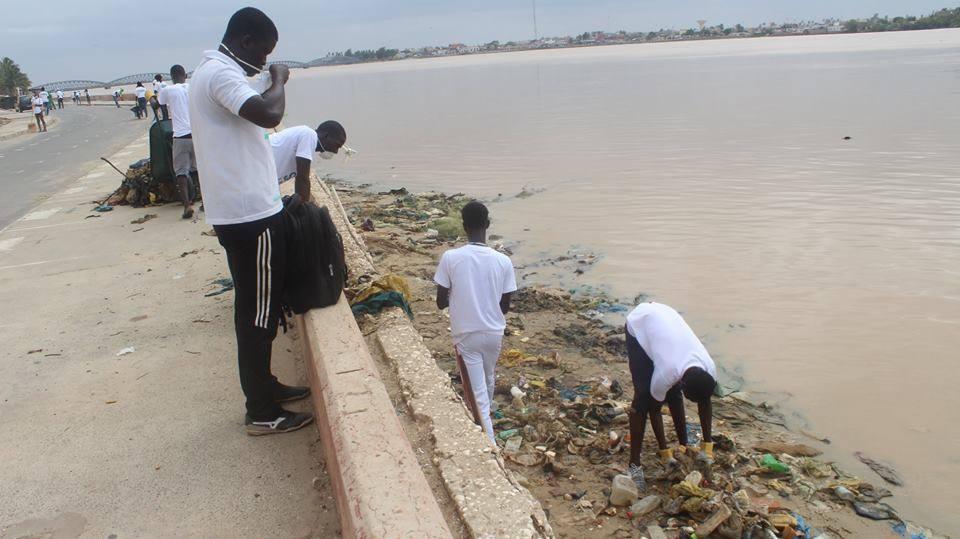 DIRECT – Une mobilisation citoyenne nettoie les berges de Saint-Louis (photos)
