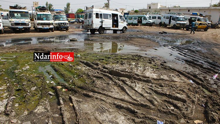 Saint-Louis - Le Garage BANGO inondé: des chauffeurs en chômage croupissent dans la misère. Regardez !