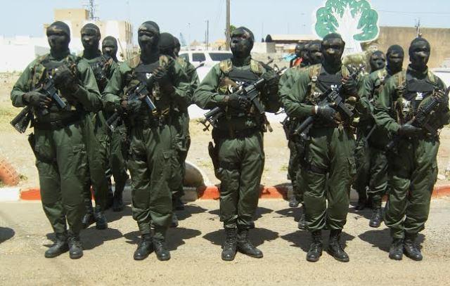 La gendarmerie dément la présence du Gign en Gambie