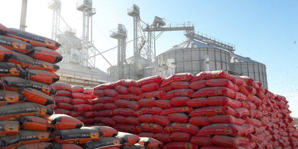 Agroalimentaire : privé de riz, Vital tire le signal d'alarme
