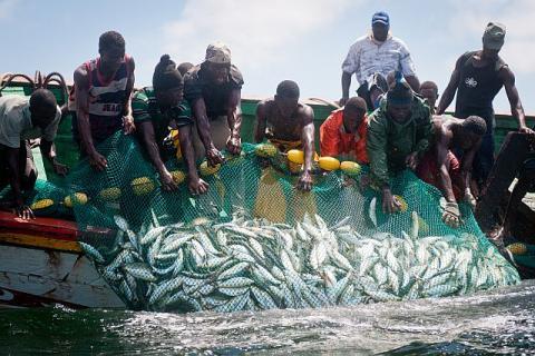 """Banjul : les accords de pêche attendus avec """"intérêt"""" par des pêcheurs et mareyeurs sénégalais"""