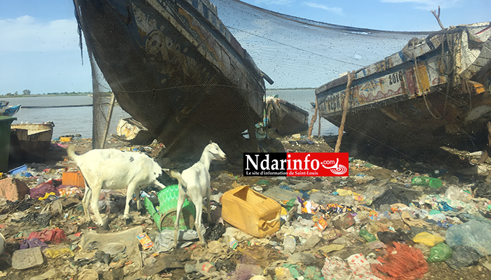 GOXU MBACC : catastrophiques, les berges (photos)