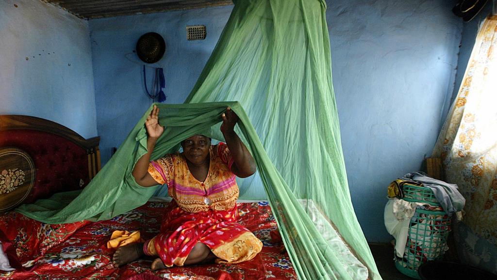 Le Sénégal en bonne voie pour l'élimination du paludisme à l'horizon 2030 (coordonnateur PNLP)