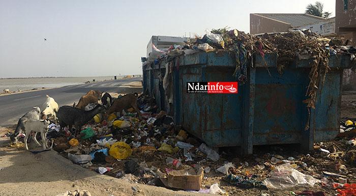 Bac à ordures oublié sur la digue de Ndioloffène