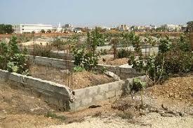 Contribution : Plaidoyer pour une agence sur le foncier au Sénégal. Par Ngouye FAYE, enseignant-chercheur à l'UGB