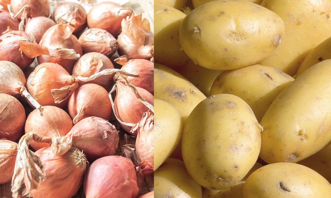 Oignon et pomme de terre : Gel des importations à partir du 25 janvier prochain