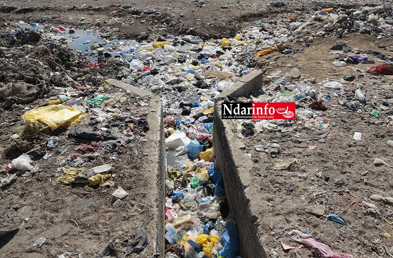 Des fosses septiques branchées sur le réseau d'évacuation d'eaux pluviales : La cause des refoulements à Pikine  ( vidéo )
