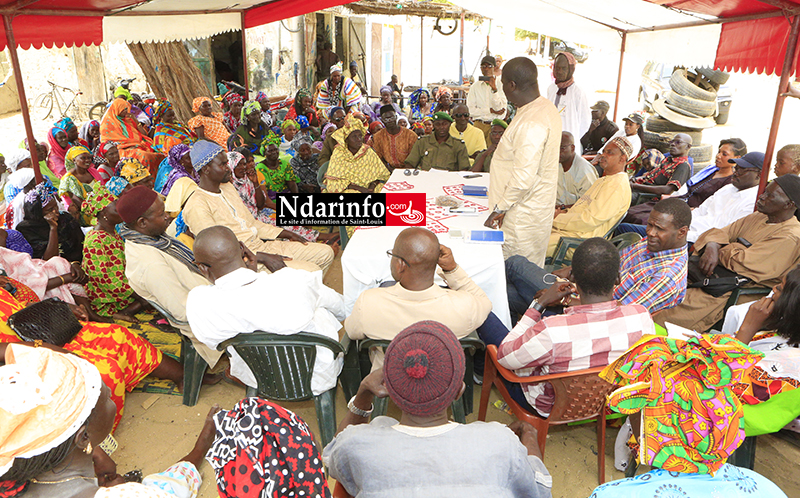 GANDIOL : les « Sirènes » de Moumbaye reçoivent une délégation du ministère de la Pêche (vidéo)