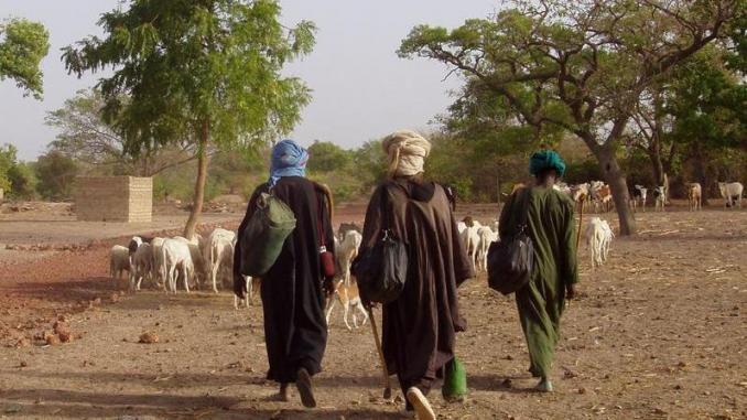 Sénégal-Mauritanie-Elevage : vers le démarrage d'un projet de développement durable du pastoralisme au sahel