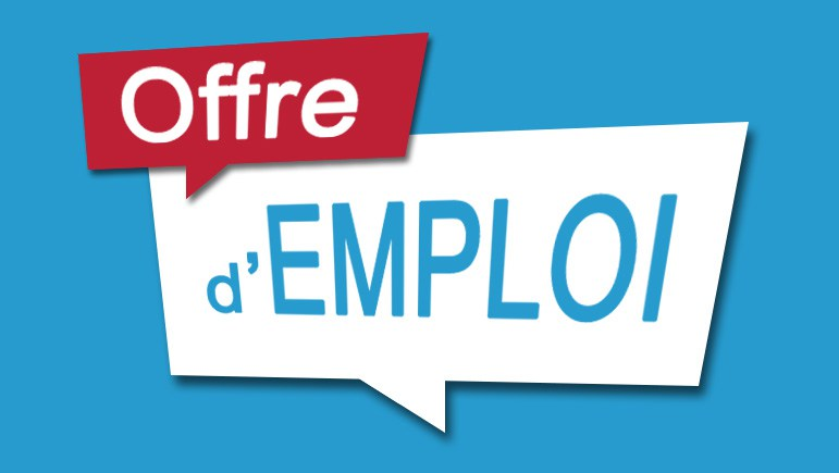 Offre d'emploi : Consultant International and Suivi et évaluation de l'UNDAF+