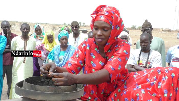 Sénégal : Le typha chauffe les marmites dans le Walo