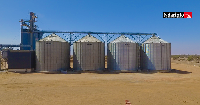 RIZICULTURE : les grandes performances de l'unité industrielle de la CASL (vidéo)