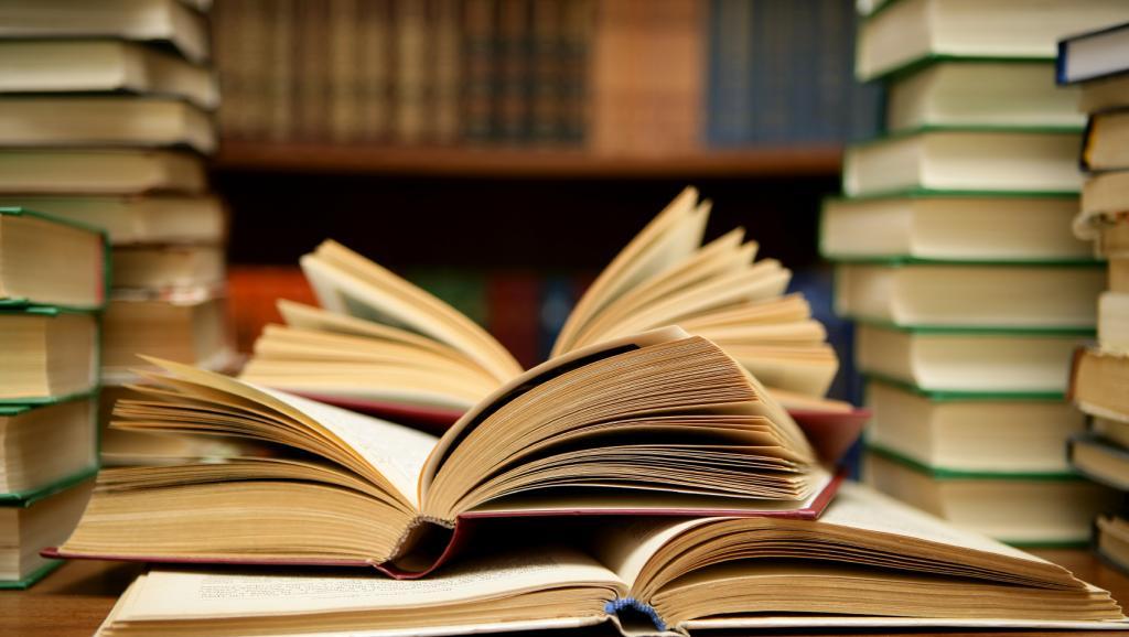 Salon National du Livre de Saint-Louis : le comité scientifique installé
