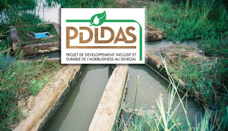 Ndiawdoune rejette le canal du PDIDAS : les populations fustigent « la méthode « solidaire et discriminatoire » du projet