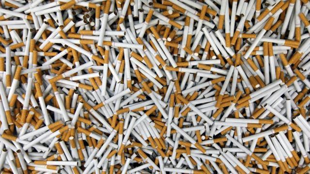 Industrie du tabac : Philip Morris accusée de tricherie au Sénégal et en Afrique