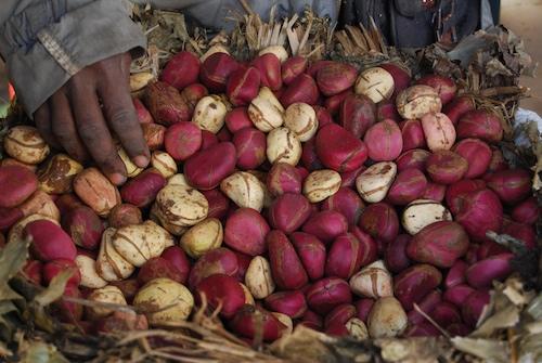 « 4,5 millions de femmes célibataires au Sénégal », l'Ong et son rapport introuvables