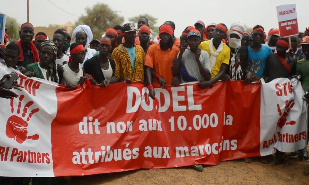 Dodele : La Cour Suprême annule l'affection d'un terrain de 10.000 hectares au groupe Afri Partners