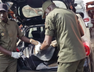 Nouvelles révélations sur la saisie de cocaïne : le cerveau sénégalais et son complice latino en fuite