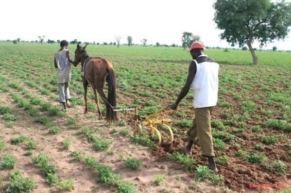 """Maram KAIRÉ : """"Notre agriculture ne doit plus dépendre de l'hivernage"""""""