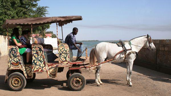 COVID-19 : les acteurs du tourisme invités à sauvegarder les emplois