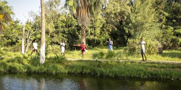 Environnement - Le Parc forestier urbain se tape 10 hectares